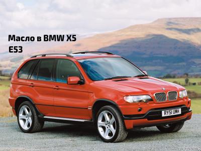 Масло в двигатель BMW X5 E53.